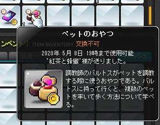 Maple_19495a.jpg