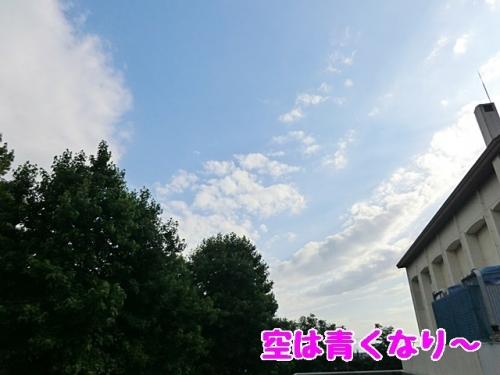 空は青くなり