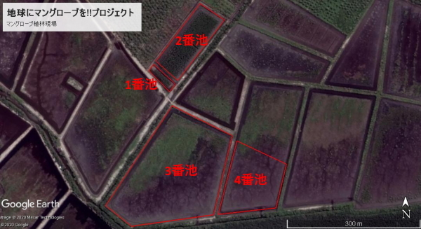 グーグルアースで見てみよう地図9