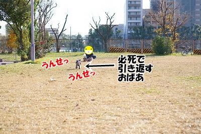 s-DSC06334.jpg