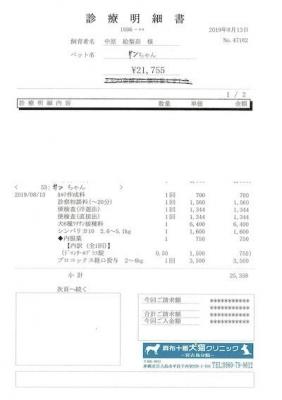 サン医療明細190813