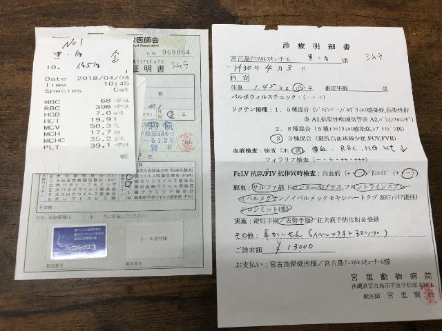 シムラ予防接種診療明細