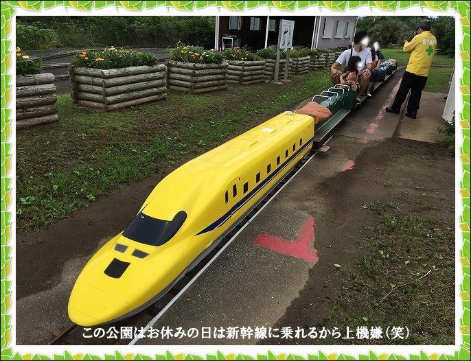 新幹線に乗れる3