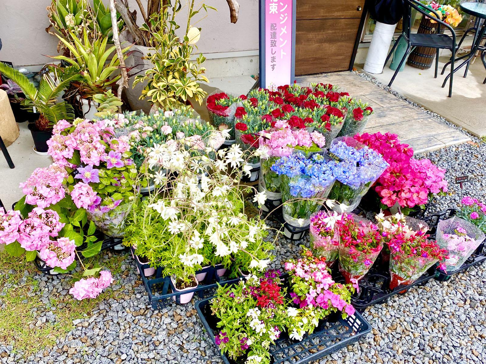 店舗前の花々
