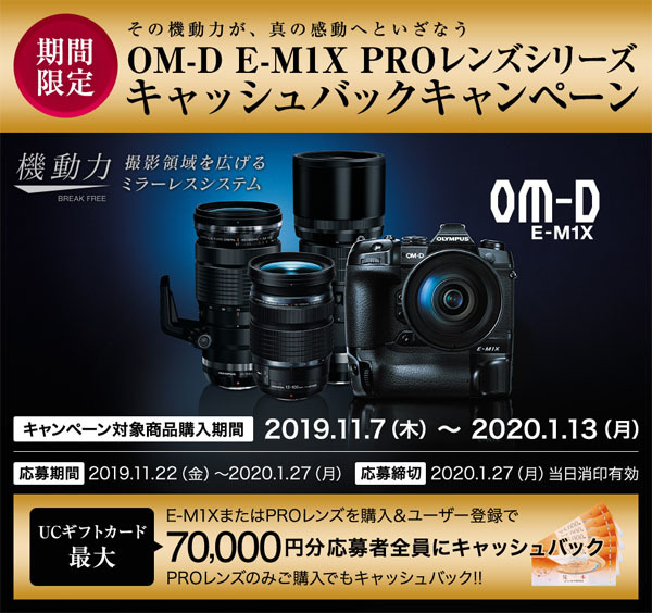 20191109c.jpg