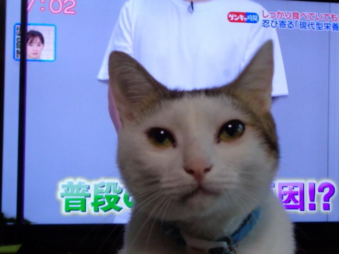 daichi0191.jpg