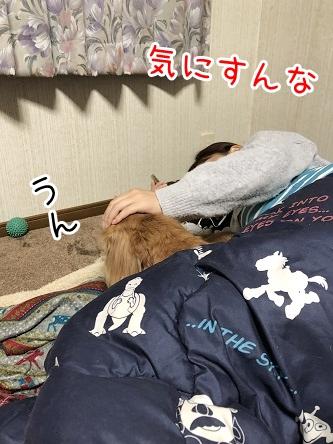 kinako17574.jpeg