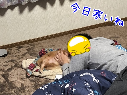 kinako17618.jpeg