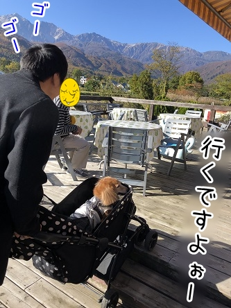 kinako17645.jpeg