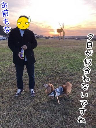 kinako17652.jpeg
