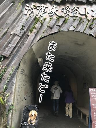 kinako17675.jpeg