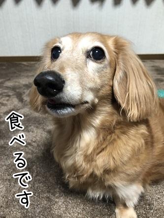 kinako17970.jpeg
