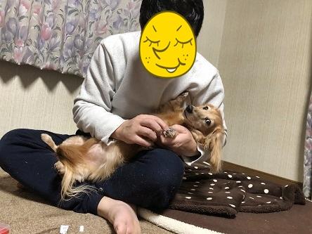 kinako18002.jpeg