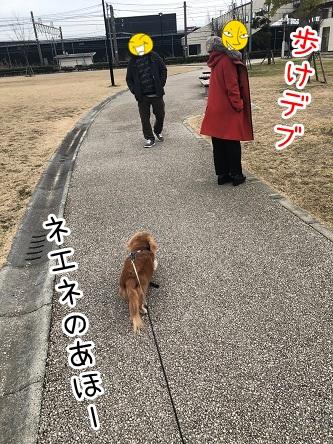 kinako18082.jpeg