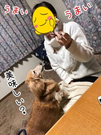 kinako18156.jpeg