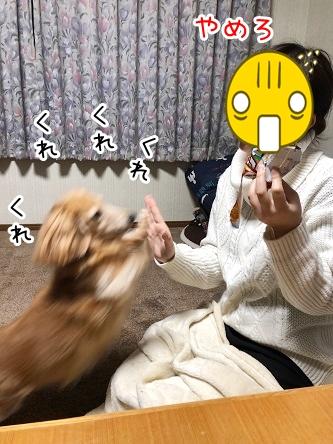 kinako18158.jpeg