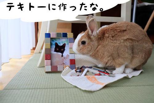 1_MG_3877.jpg