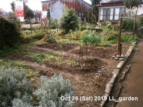 01f 600 LL_garden