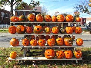 03aa 300 rack of pumpkins