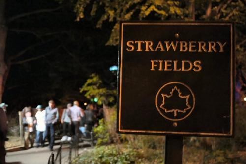 03a 600 Strawberry Fields