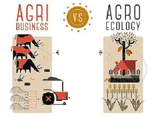 03b 500 agri vs agro