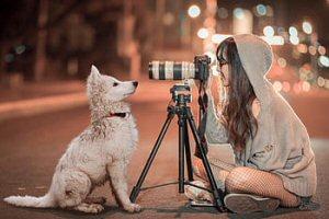 03b 300 Pxfuel dog lady