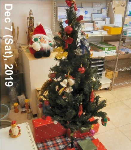 01a 500 191207 Xmas tree in store