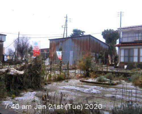 01a 500 20200121 Snow Garden