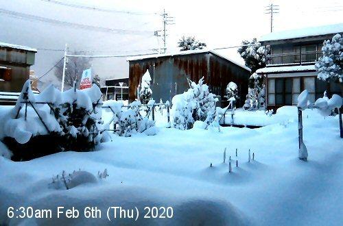01c 500 20200206 LL_garden snow