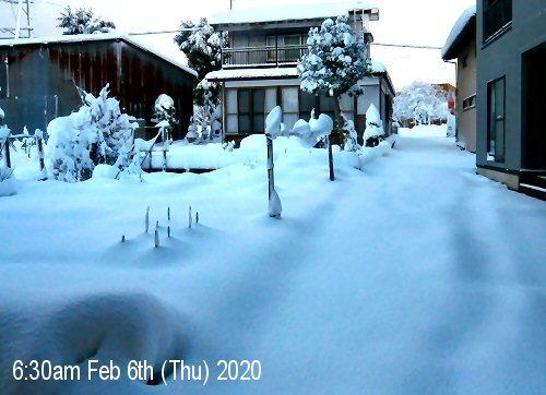 01d 500 20200206 LL_garden residence snow