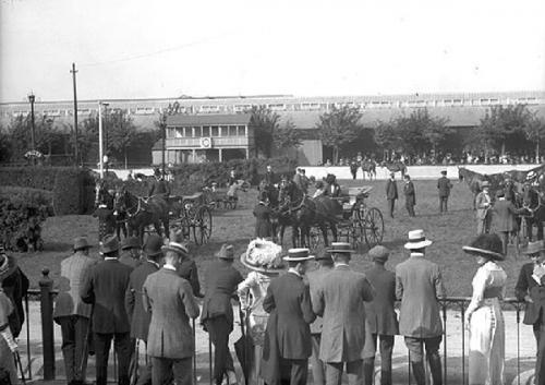 09a 600 Dublin Horse Show