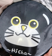 hicha1.jpg