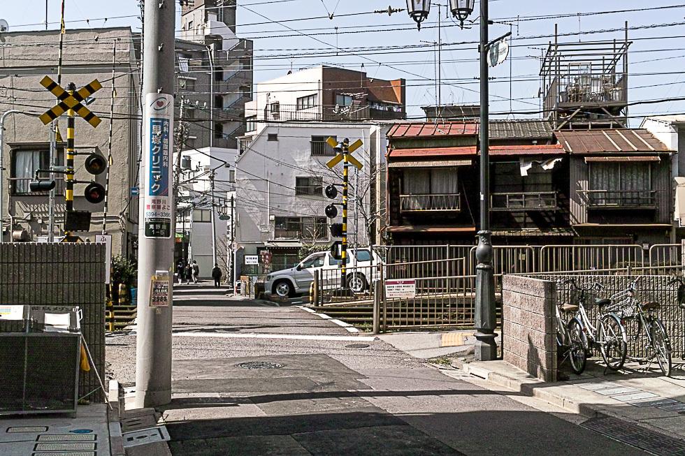100314滝野川980-1551