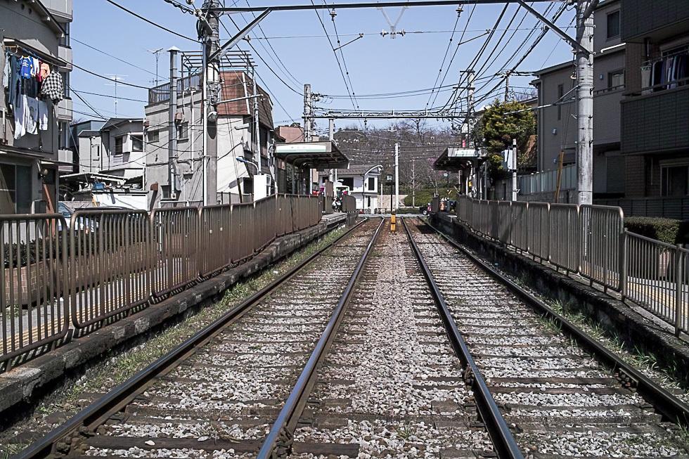 100314滝野川980-1554