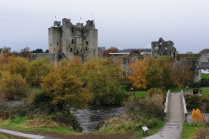 trimcastle1119