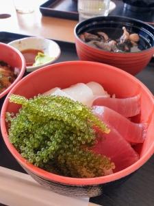 okinawa01205