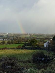 rainbowinthewest0220tate