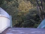 スケバン刑事2:代々木橋2