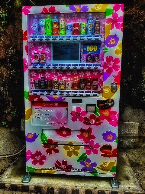 河津桜模様の100円自販機