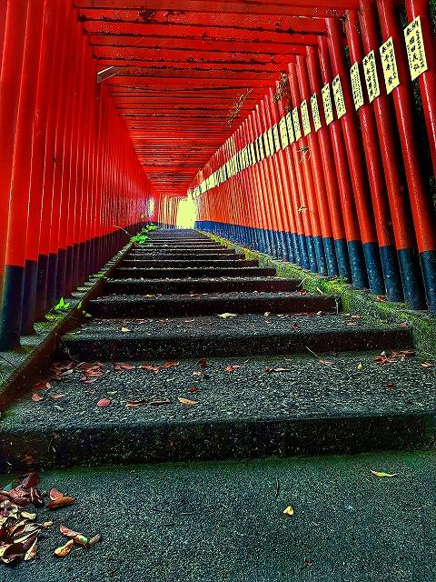 扇森稲荷神社の赤い鳥居