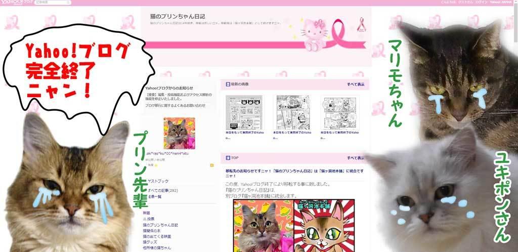 2019-12-15-Sun-01-Yahoo!ブログ-完全終了-猫のプリンちゃん日記