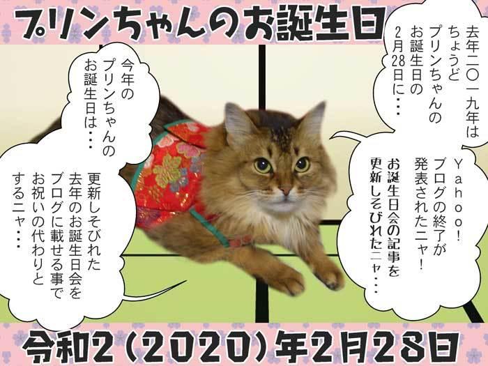 2020-02-28-Fri-01-プリンちゃんお誕生日2020_CIMG3275