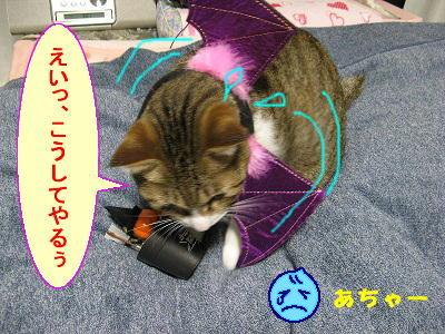 ハロウィン猫漫画