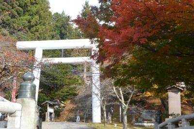 hanitumomiji102.jpg