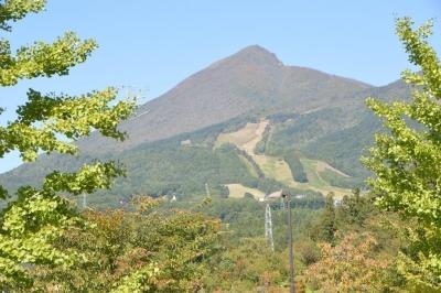 kamegajo281.jpg