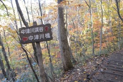 nakatugawa05.jpg