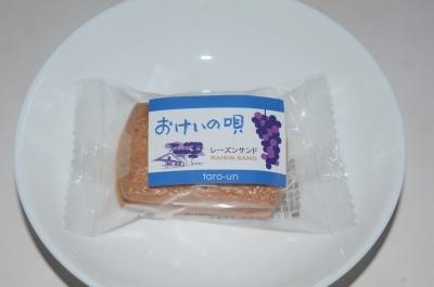 taroan-haru08.jpg