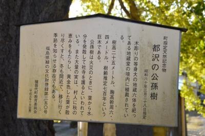 tozawa03.jpg