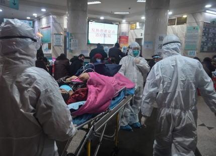 中国で世界的なパンデミックを引き起こす恐れのある新型のインフルエンザウイルスが見つかる … ブタを宿主としヒトにも感染、新型なのでウイルスに対して免疫をもつ人はほぼ存在せず