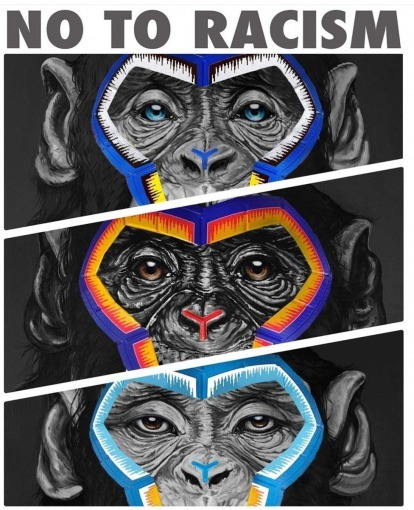 Serie A used monkeys in an anti-racism posters